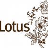 Lotus Boutique Unveils New Web Site