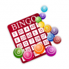 June 24, 2019 National Bingo Day