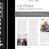 Cat Depot: A Home For Homeless Cats And Kittens