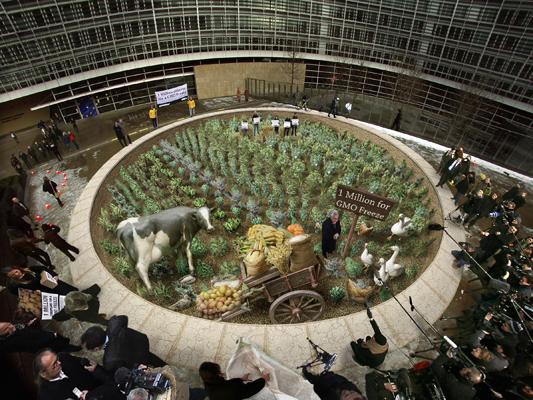 Kurt Wenner greenpeace