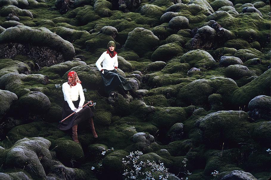 Islanda-Muschio-601