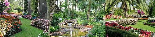 James M. Towery & Associates Juniper Landscaping Landscape