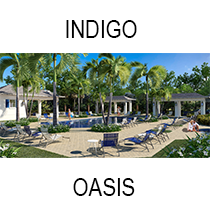 Indigo Oasis